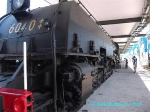 DSCF3185 (Medium)