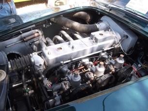DSCF6298 (Medium)